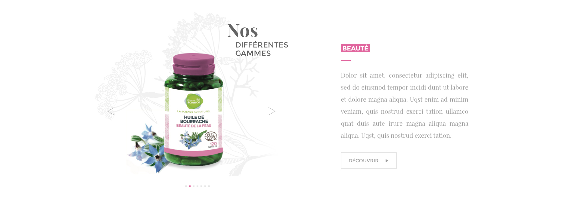 nos_differentes_gammes